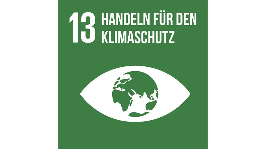 Sustainable Development Goal 13