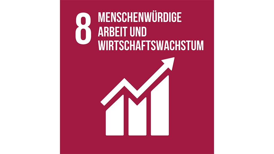 Sustainable Development Goal 08